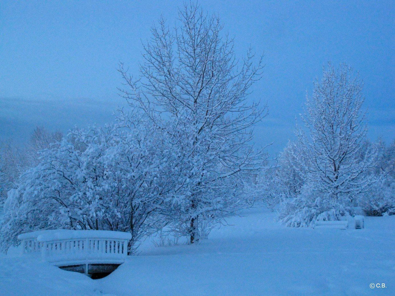 Weihnachtsessen Island.Winter In Island Advent Und Weihnachten In Reykjavik