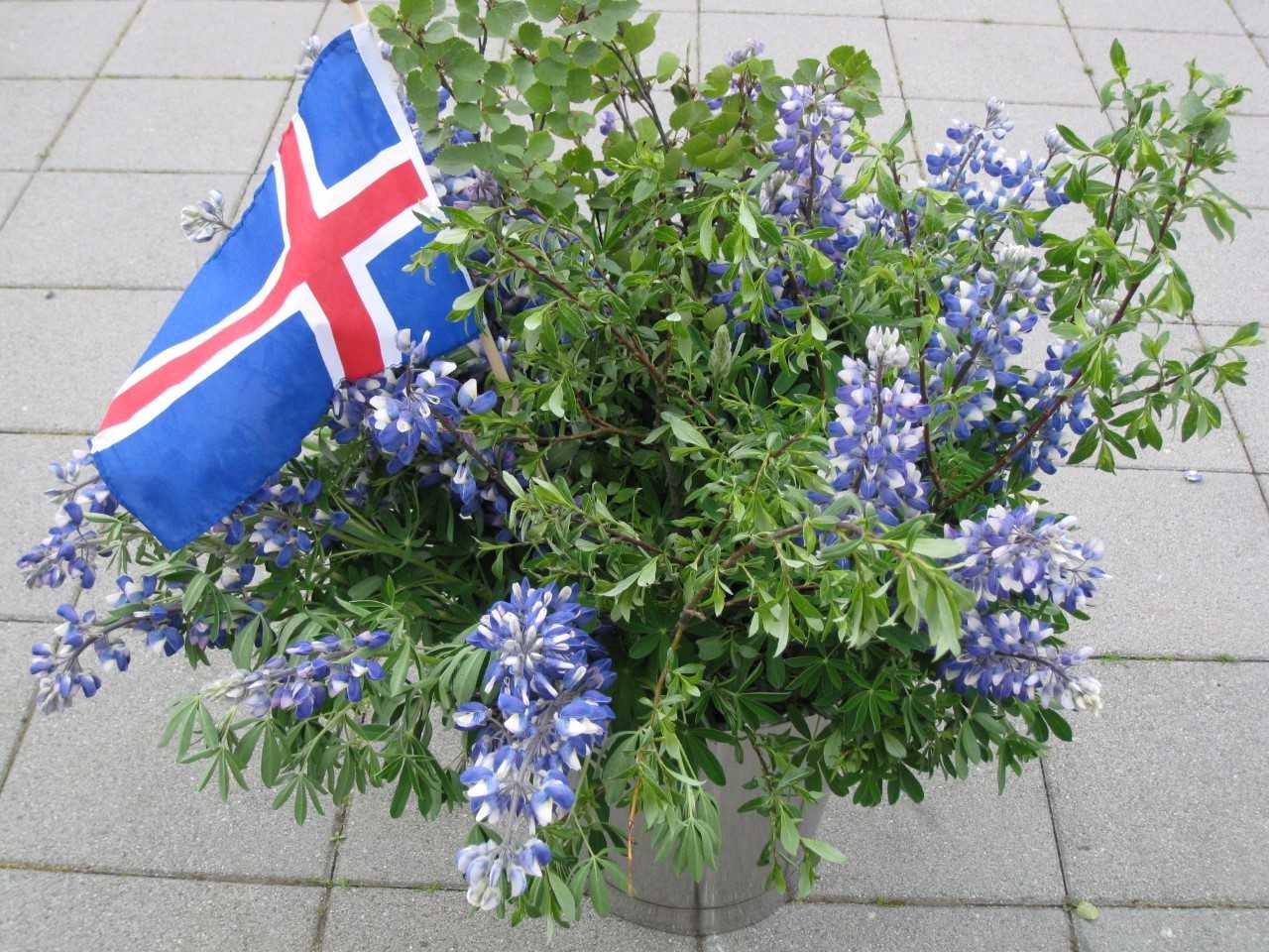 Nationalfeiertag auf Island