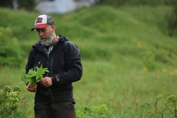 hakon and the herbs